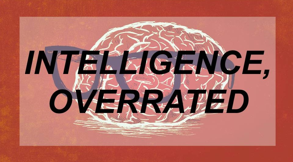 Intelligence: Overrated Thing